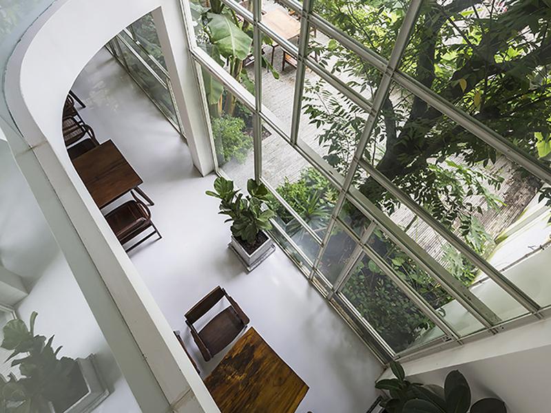 Kientruc O và thiết kế không gian xanh kết hợp giữa nơi ở và nơi làm việc tại Việt Nam