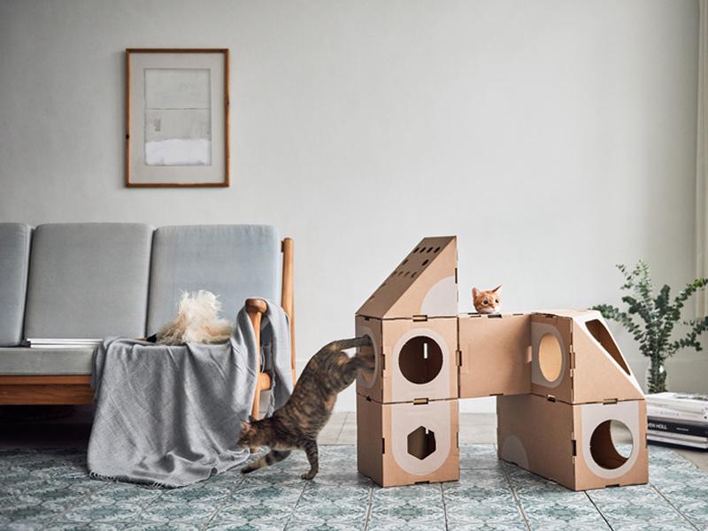 A Cat Thing – thiết kế dạng module dành cho chú mèo yêu