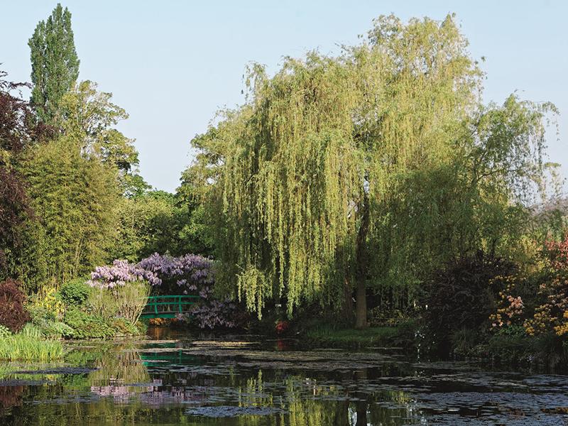 Chuyện về 8 nghệ sĩ và những khu vườn đầy mê hoặc (Phần 2)