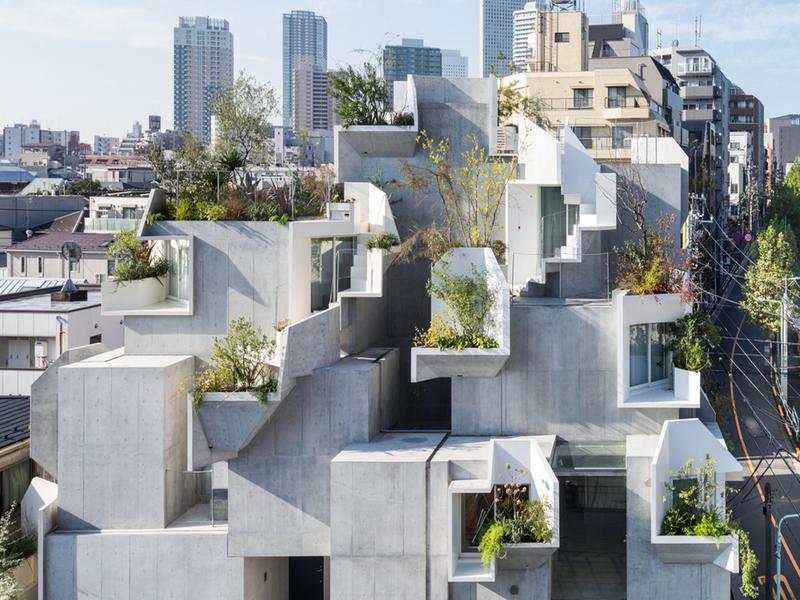 """Tree-ness house: ngôi nhà với nhiều """"ô"""" phòng mắc nối, đan xen của Akihisa Hirata"""
