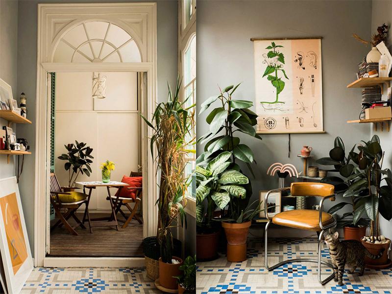 Ngôi nhà thanh lịch của Nhà thiết kế thời trang Paloma Lanna