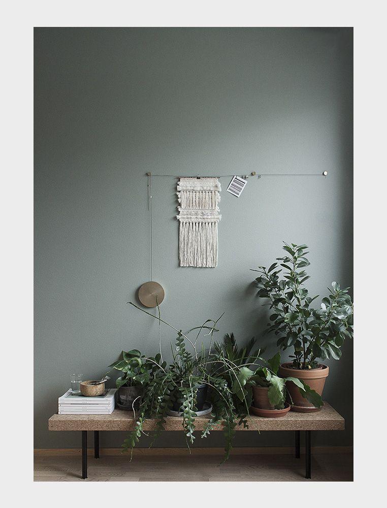 cây cảnh trong nhà-ốc đảo xanh elledecoration vn 1