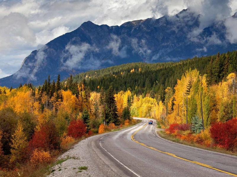 Chiêm ngưỡng khung cảnh mùa thu vàng rực rỡ ở khắp nơi trên thế giới
