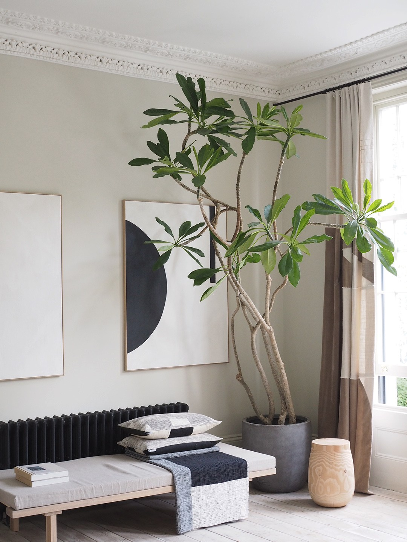 dọn dẹp nhà 5 phút-ed tips-elledecoration vn 4