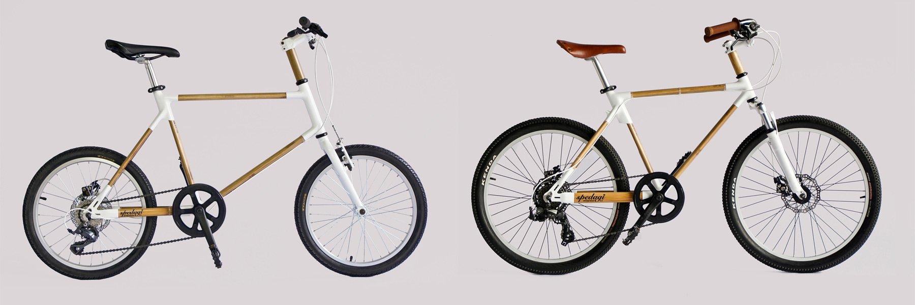 xe đạp tre 5