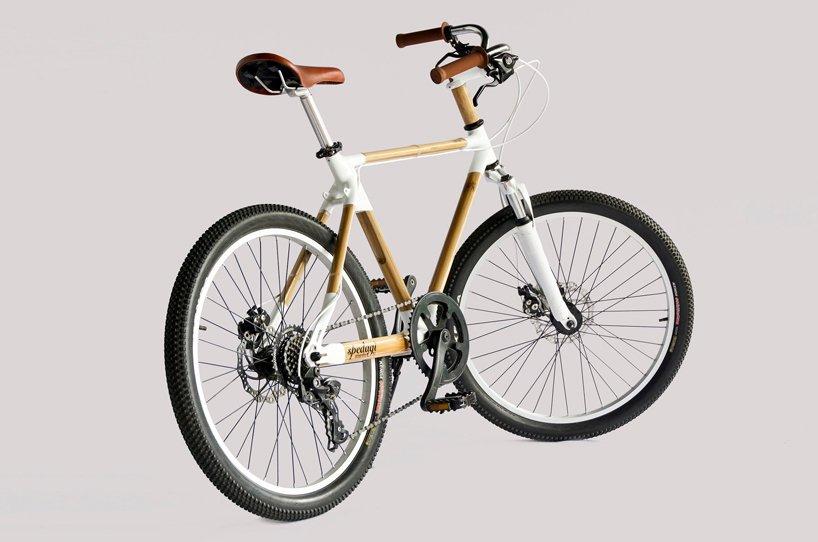 xe đạp tre 1