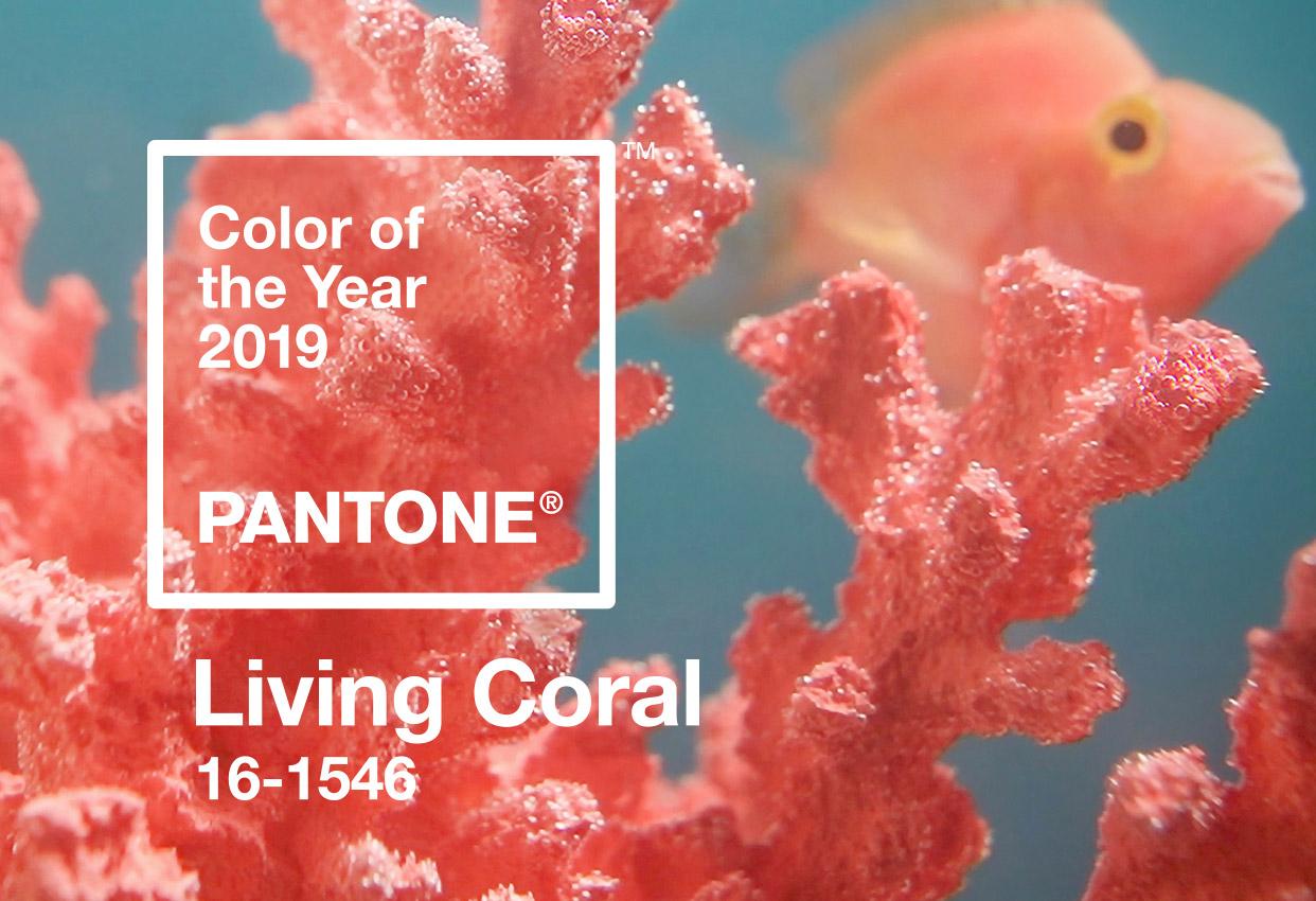 Pantone living coral 2019 elledecoration vn