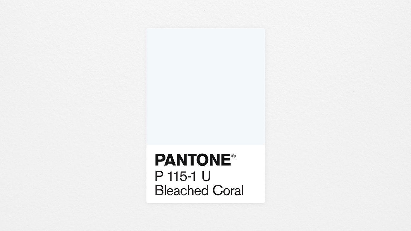 jack huei pantone 2020bleached coral elledecoration vn 2