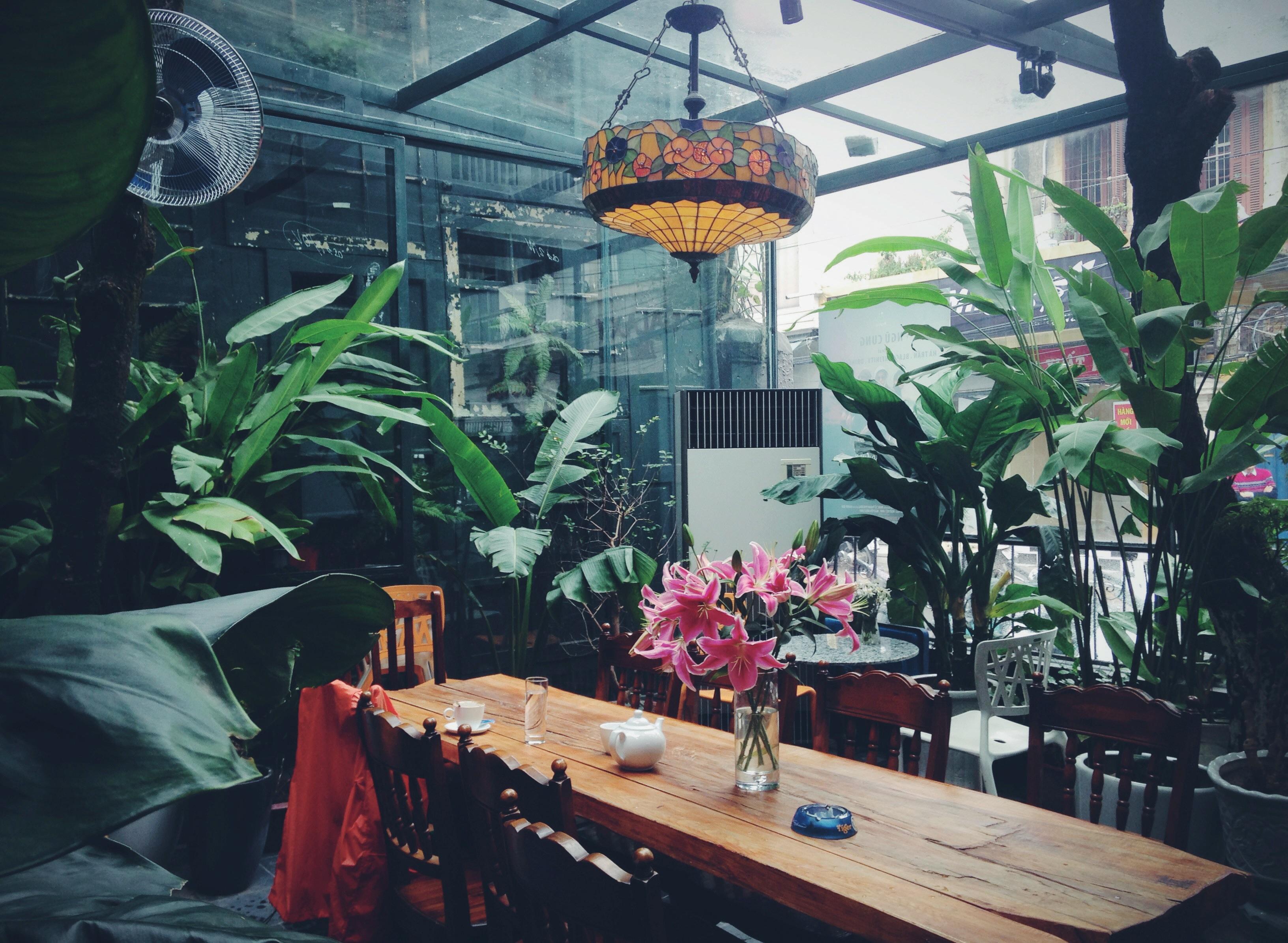 Giang Trang 5