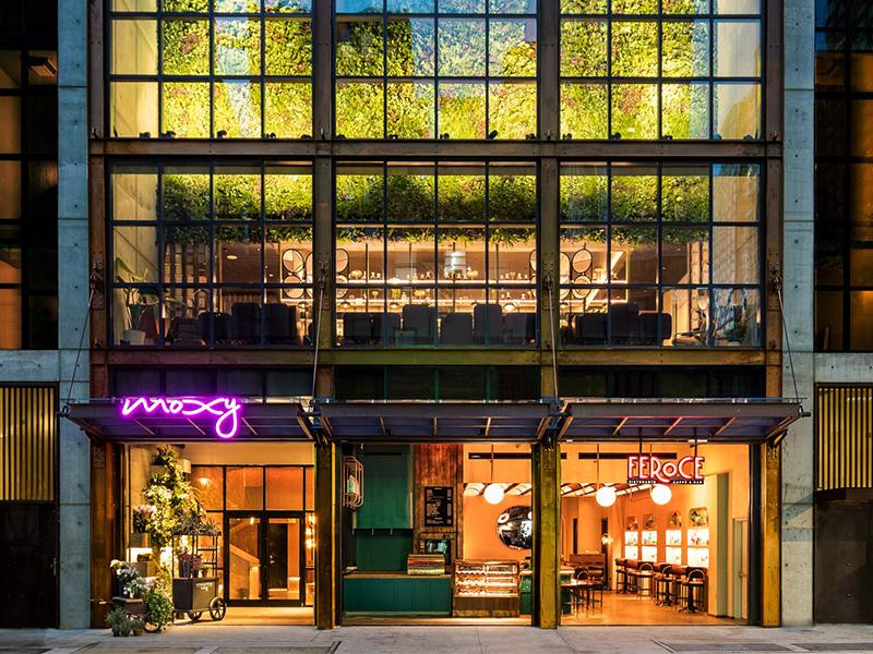 Khách sạn Moxy - Cảm hứng từ chợ hoa