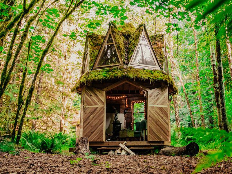 Những ngôi nhà nhỏ chứa trọn niềm vui sống