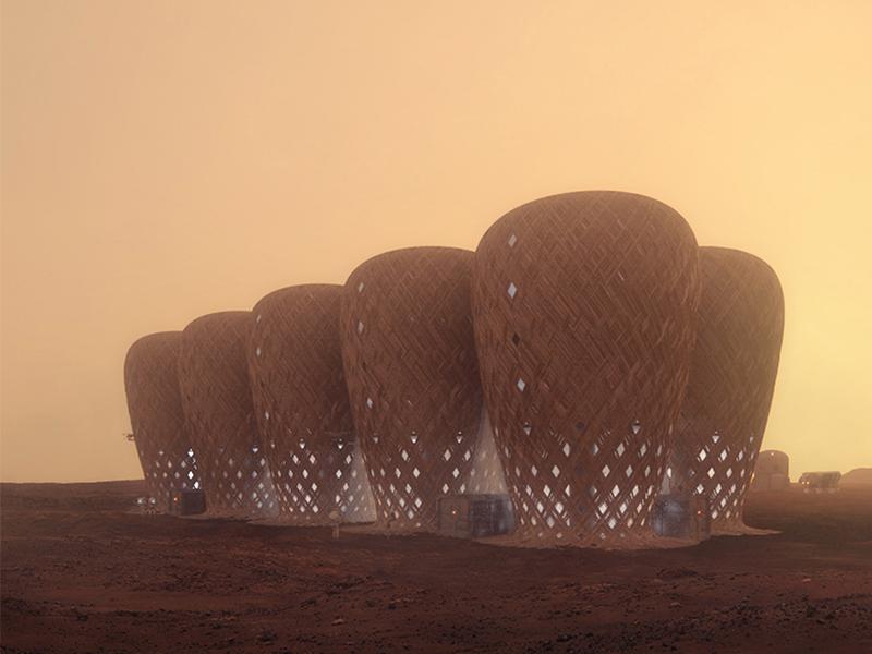 Xây dựng công trình Sao Hỏa bằng vật liệu tre bản địa