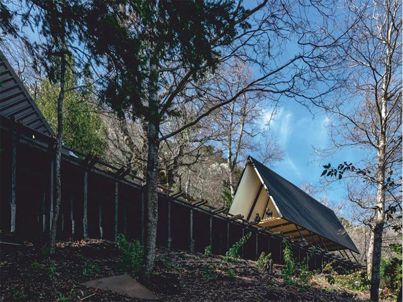 Prism House - Nhà gỗ giữa núi rừng