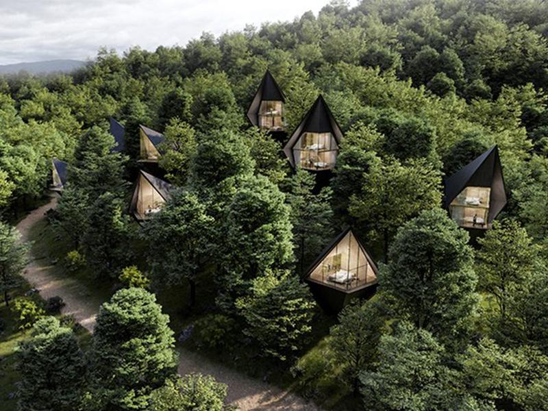 Dự án nhà trên cây bền vững tại West Virginia