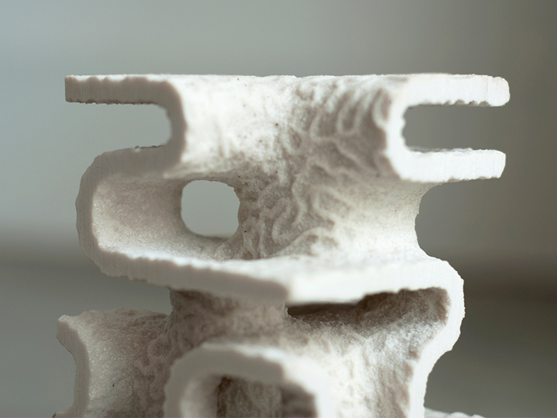 Dự án phục hồi sinh thái biển bằng giải pháp in 3D